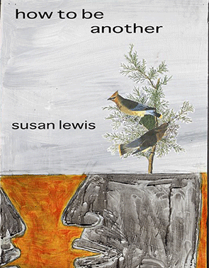 How to be Another Susan Lewis